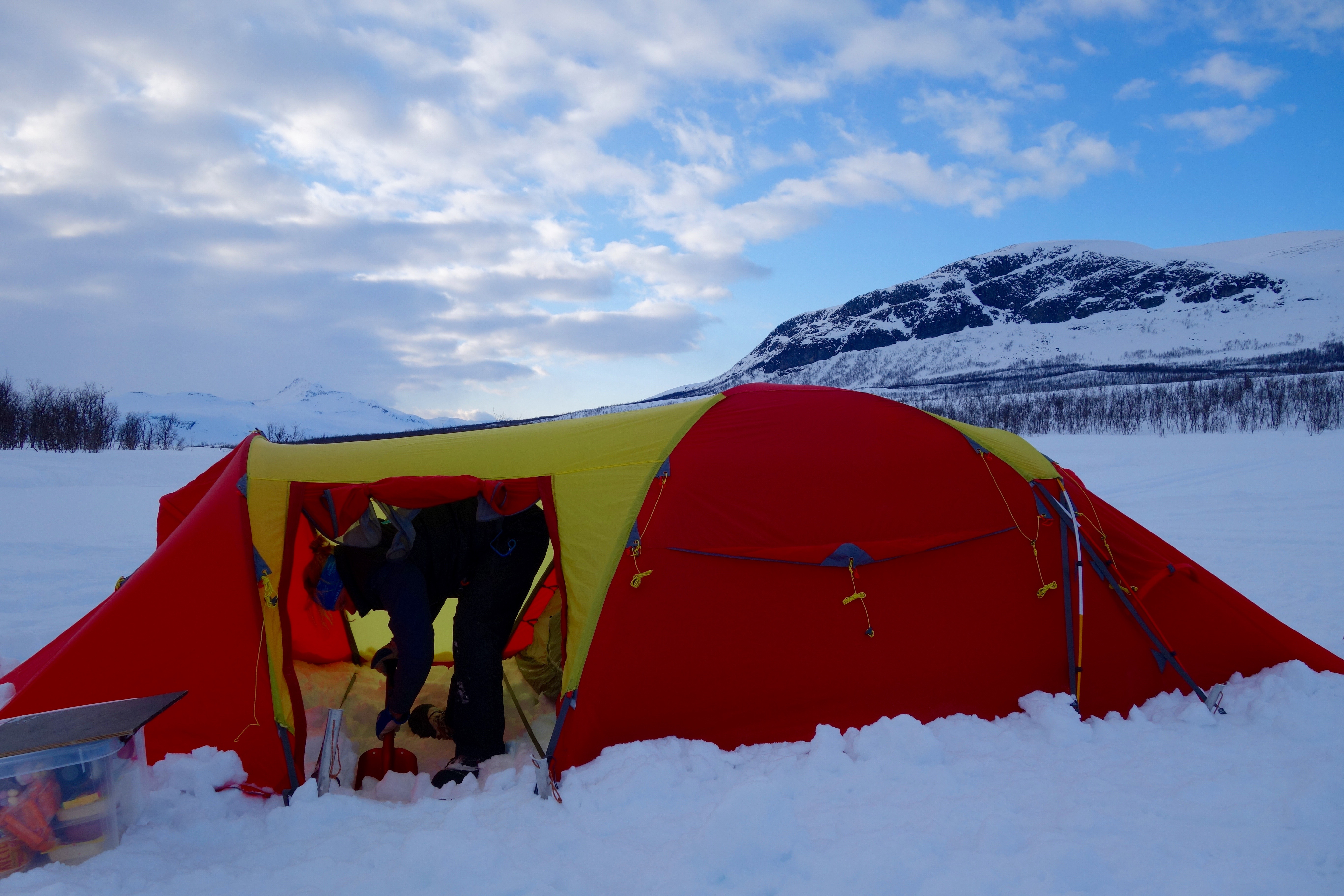 Learn how to live in the wild and cold nature