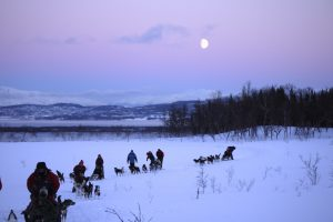 purple evening sky in the mountains with dog sledding teams on the snow