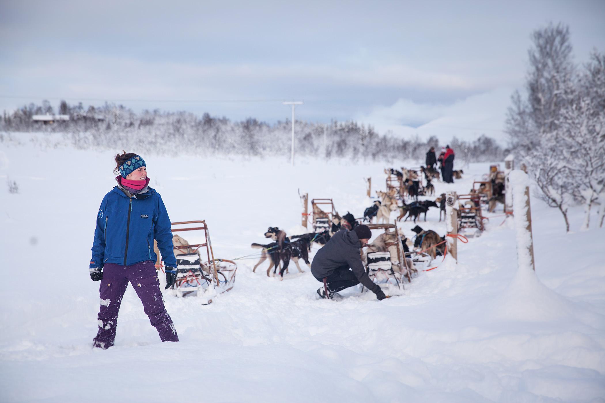 kennel manager Sophia organising the dog sledding teams