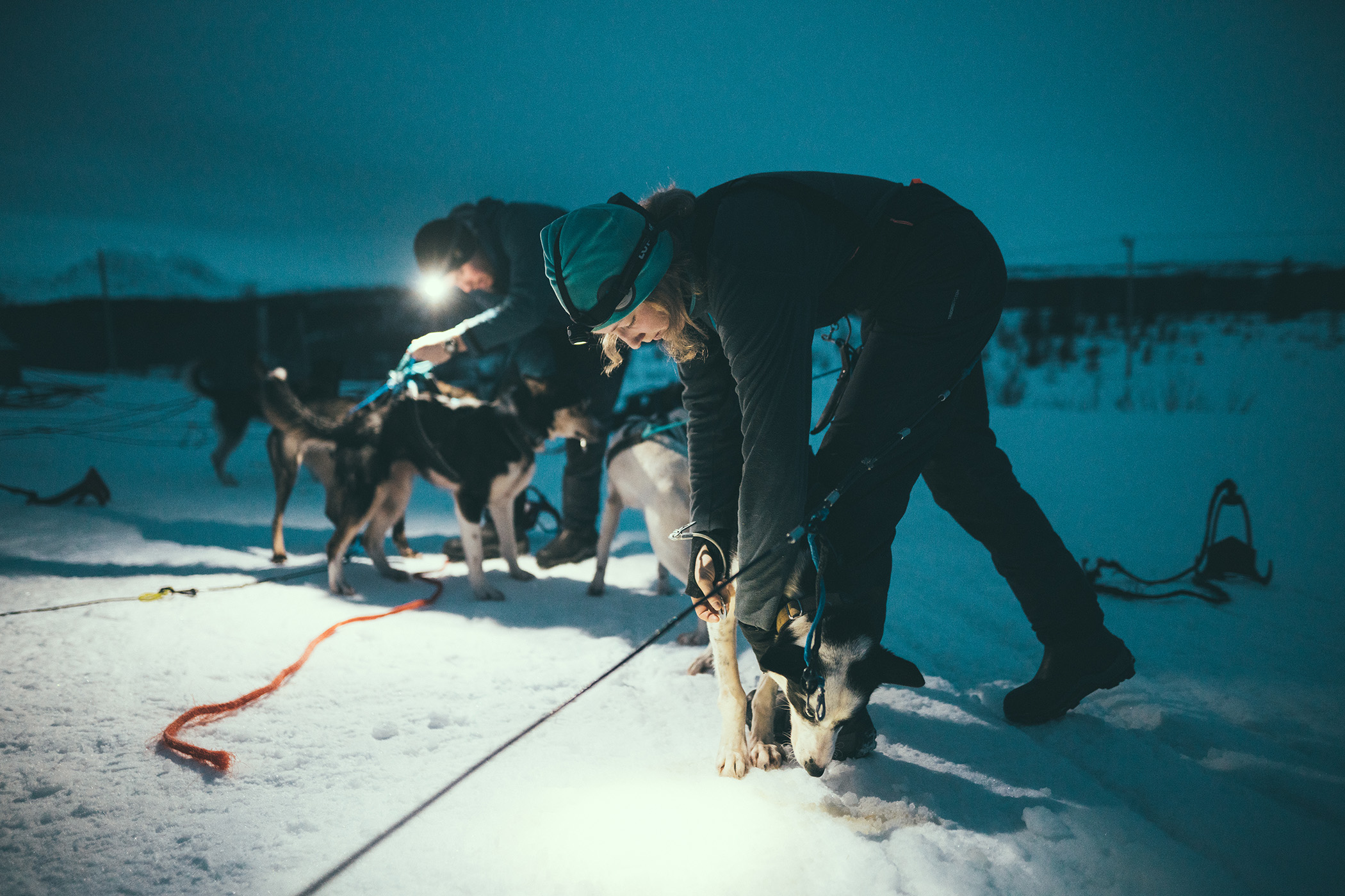 Caro fixing a dog harness in the dark with a head lamp