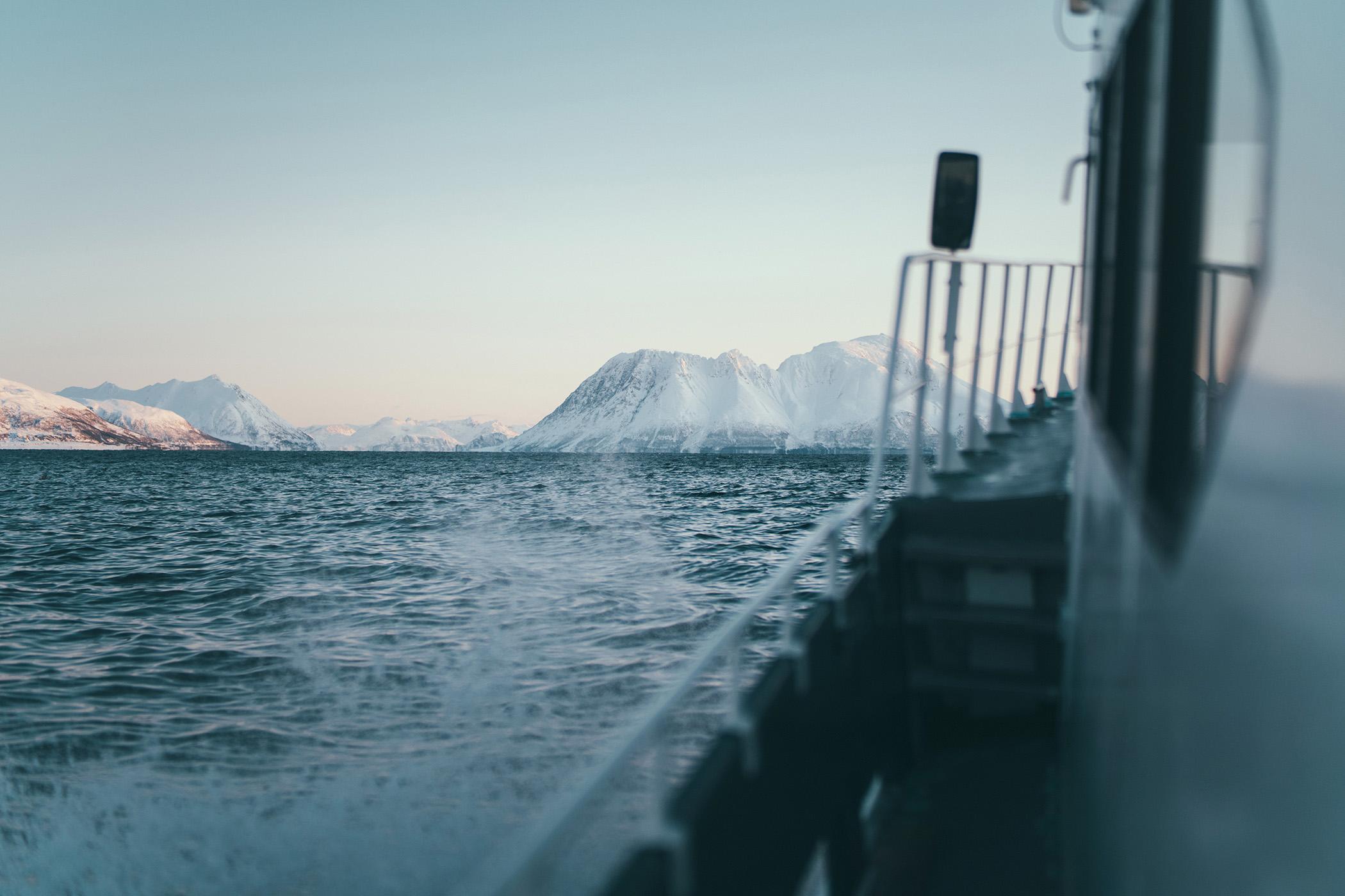 Fjord Cruise Tromsø