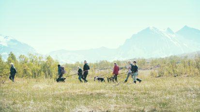 Husky Hiking