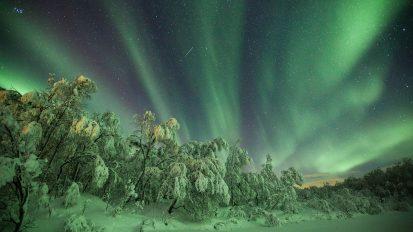 Tromsø Aurora Hunt