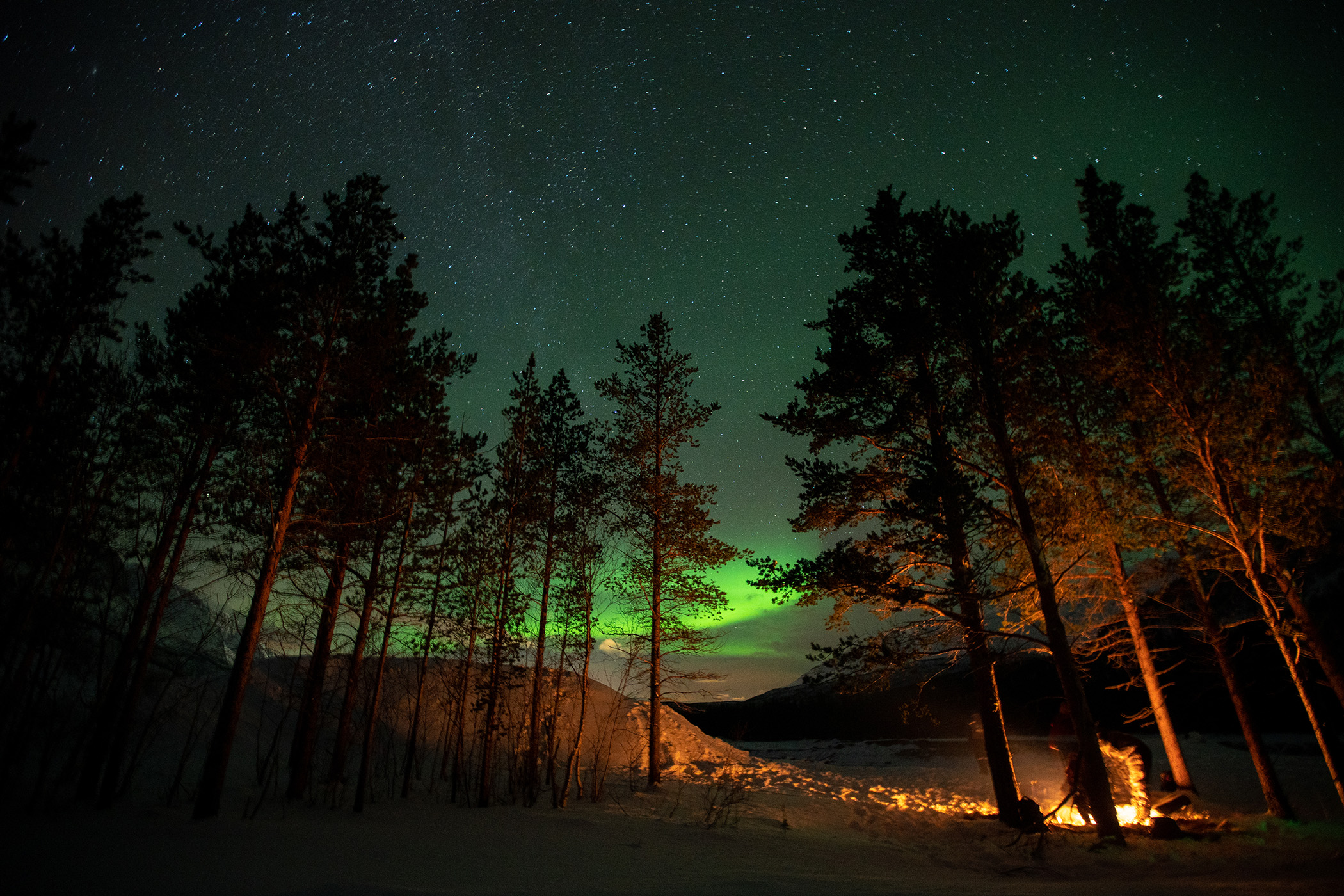 Campfire in the forest with northern lights