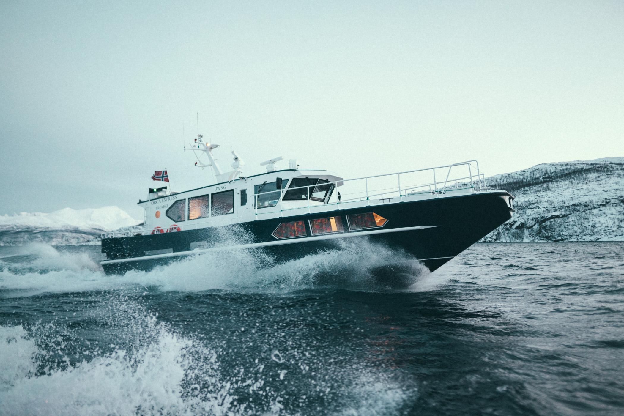 Arctic Adventure Tours, Orca Express
