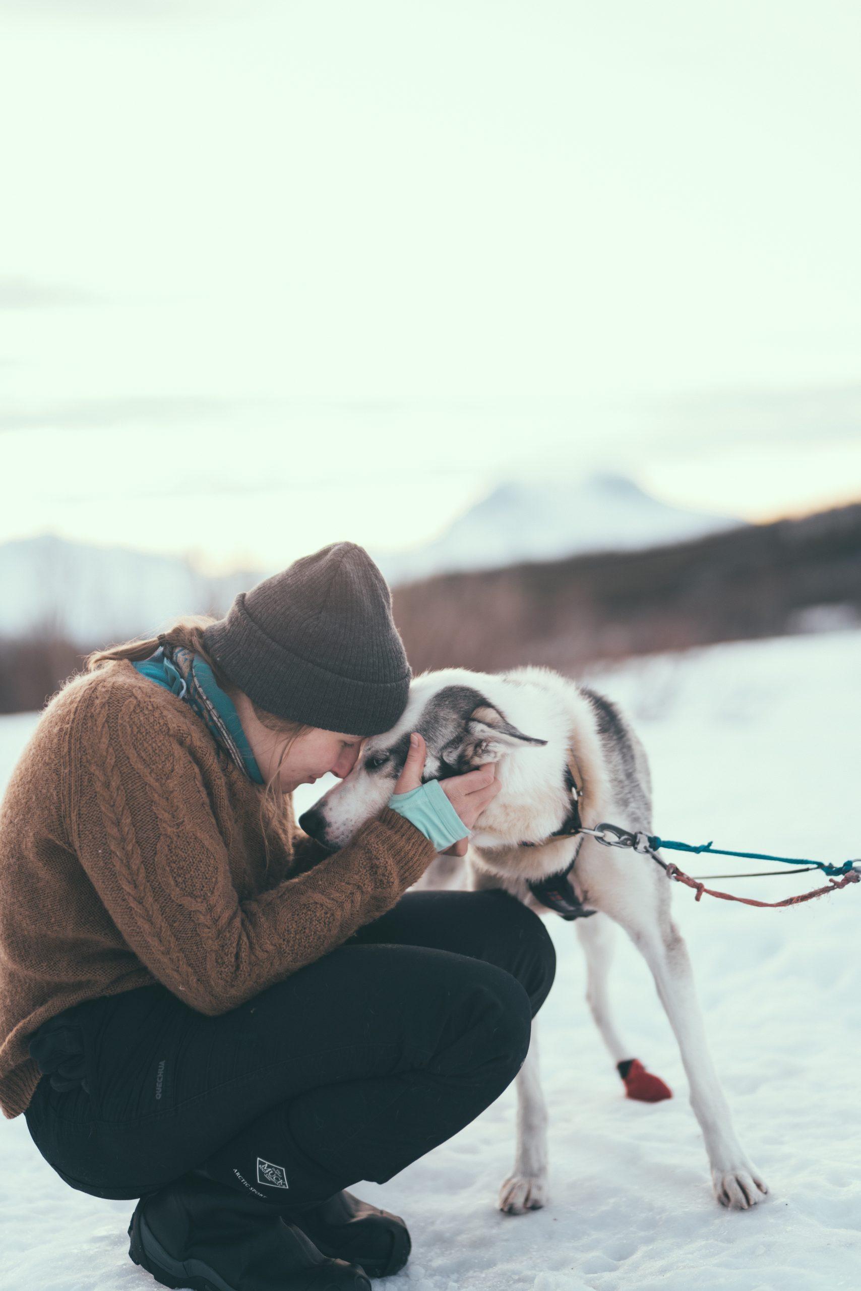 woman an husky bonding