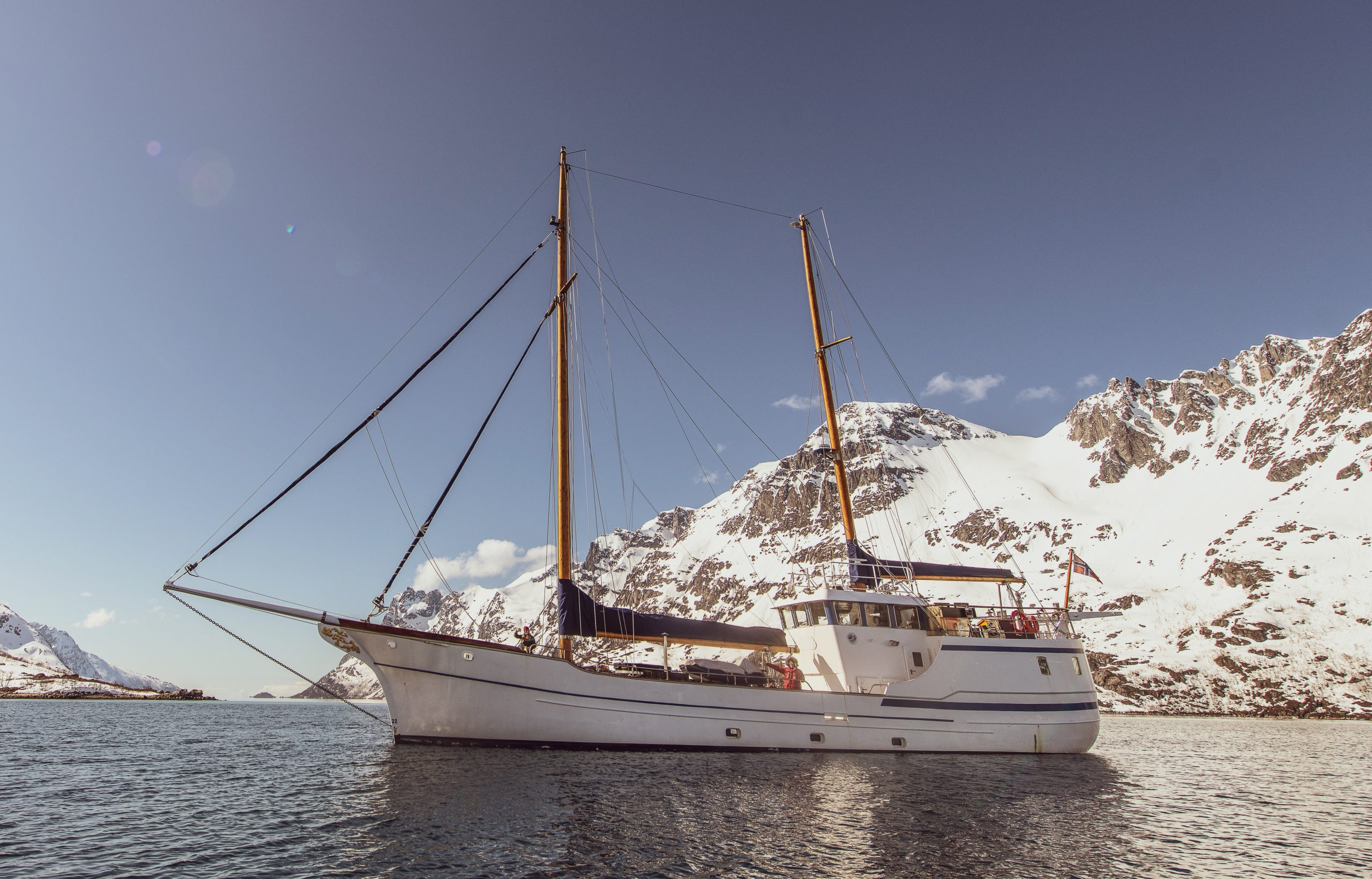 whale watching expedition onboard sailing boat stella oceana