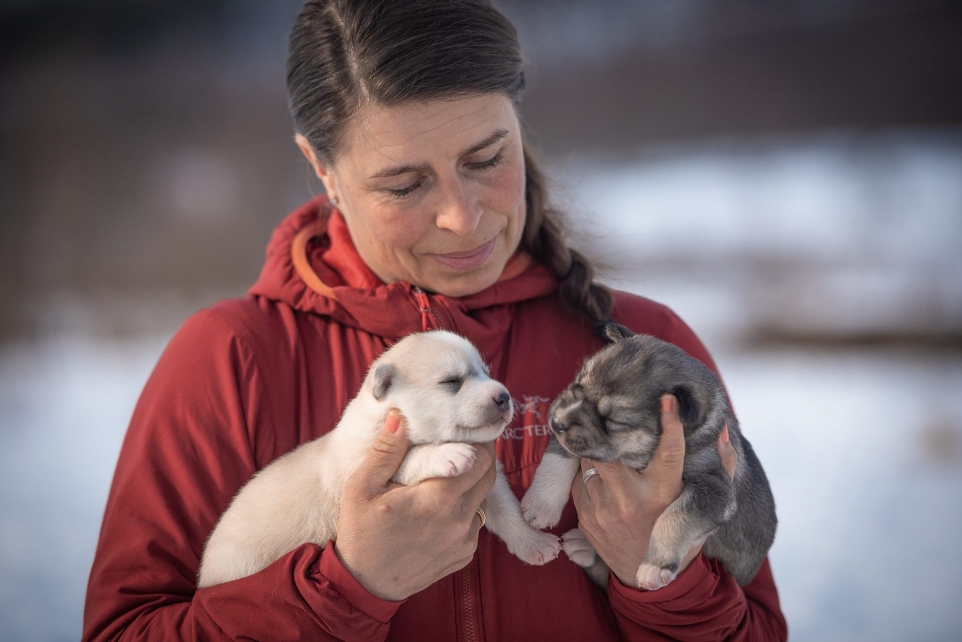 Hege with two little husky puppies