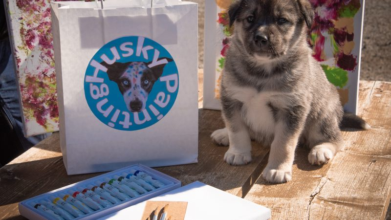 What is Husky Painting?