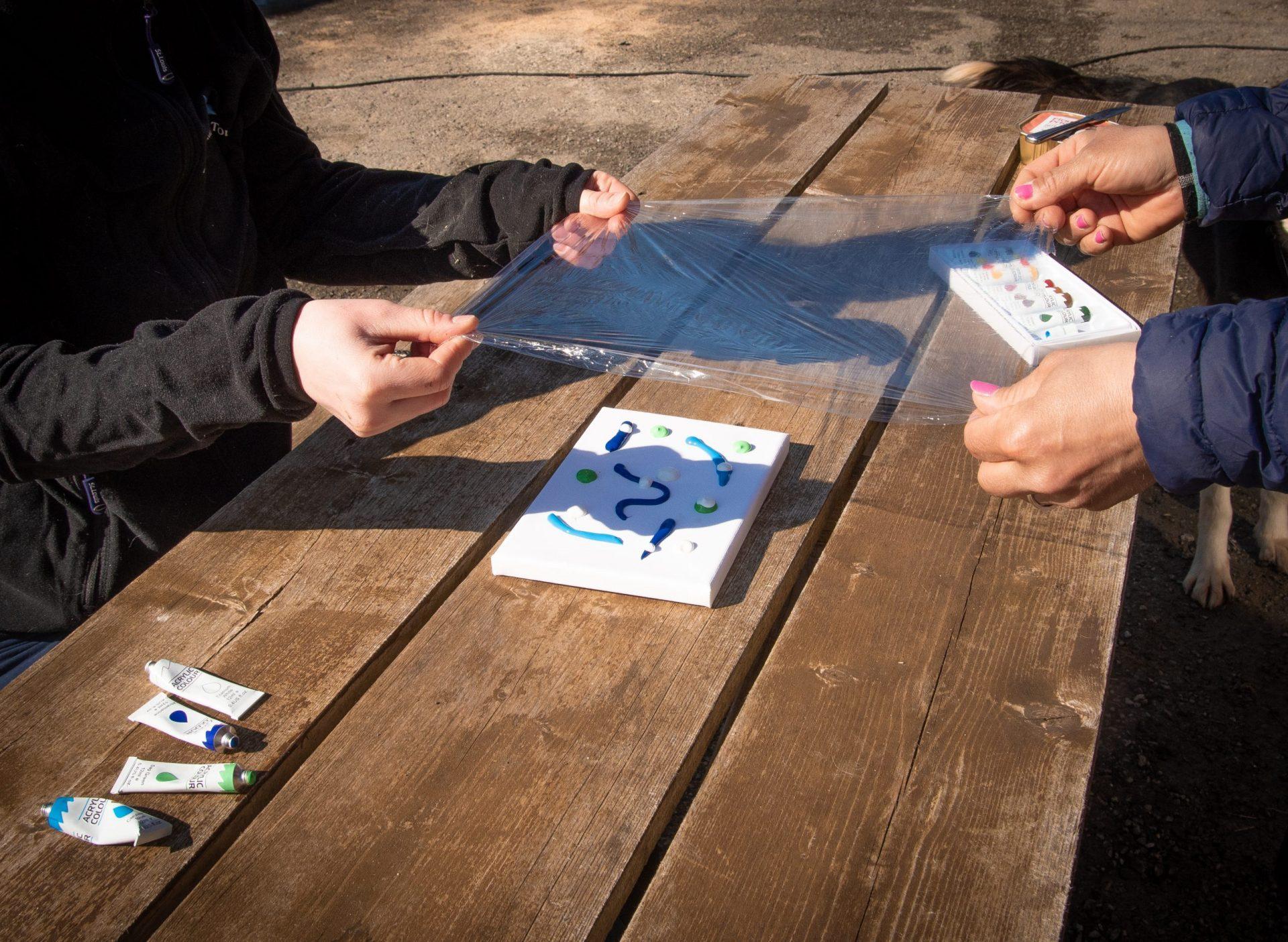 preparing dog painting challenge for husky